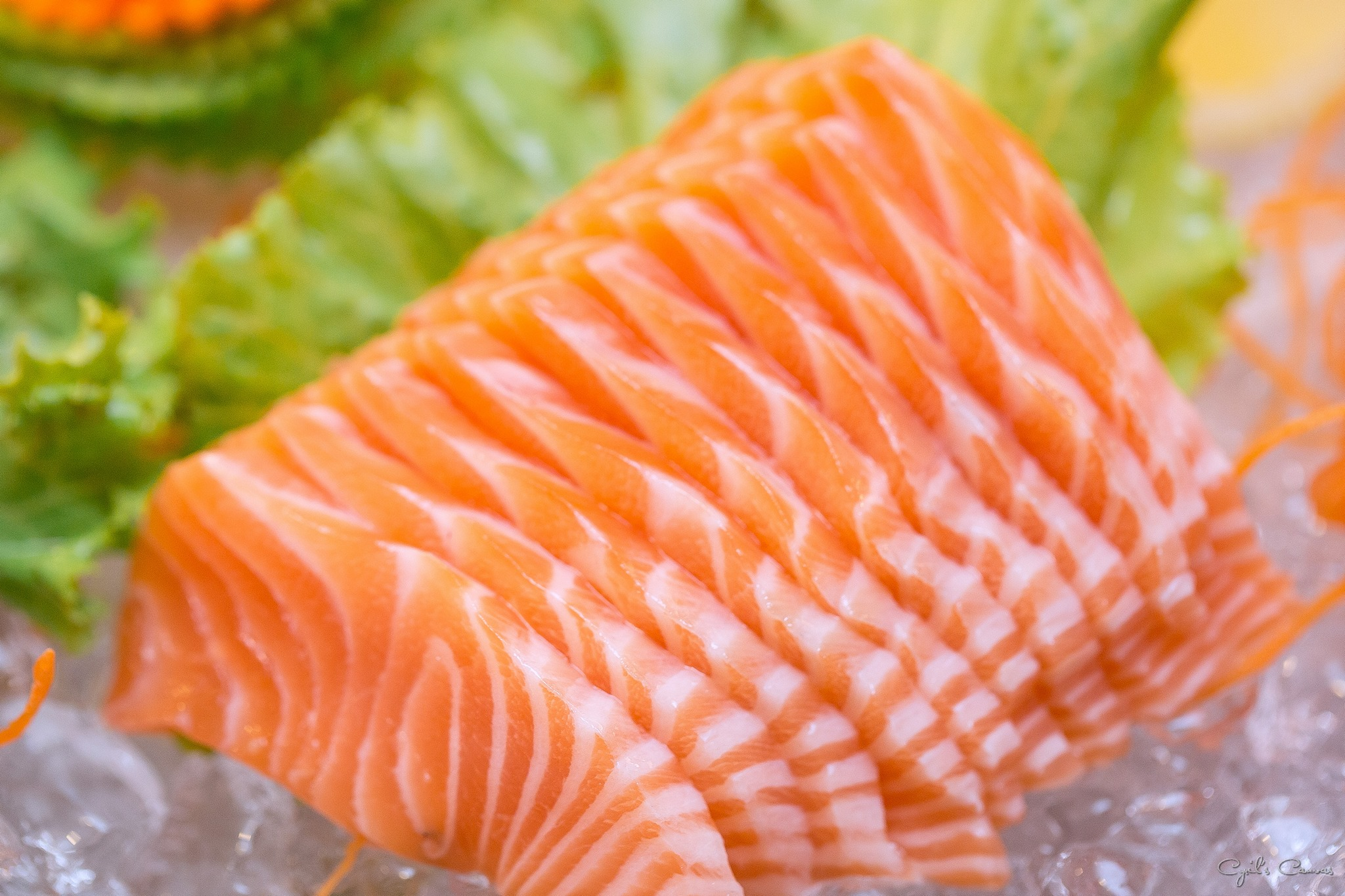Salmon Sashimi Appetizer (8 Pieces)